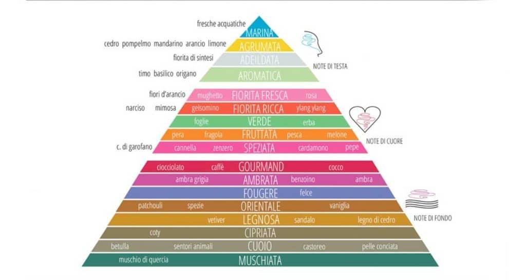 Piramide Olfattiva Profumi Equivalenti